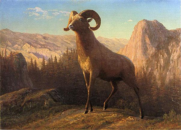 Albert BierstadtRocky Mountain School Nationalism